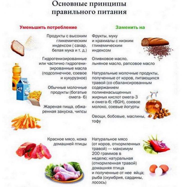 Принципы рационального питания (схема)