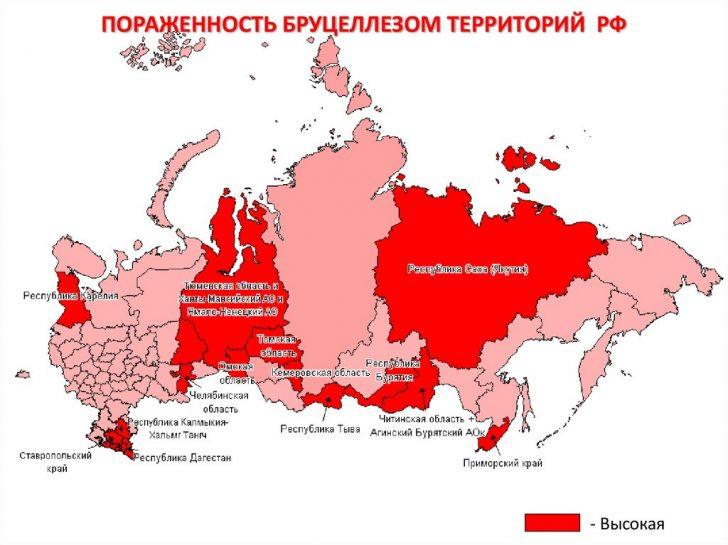 Карта распространения инфекции на территории РФ