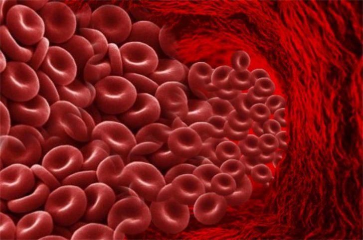 Много эритроцитов в кровяном русле