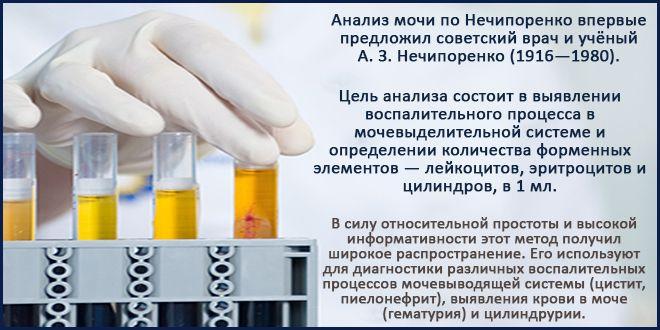 Описание пробы по Нечипоренко