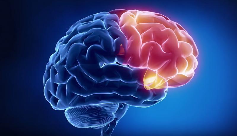 Отёк головного мозга: симптомы и лечение