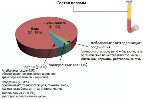 Состав плазмы крови (схема)