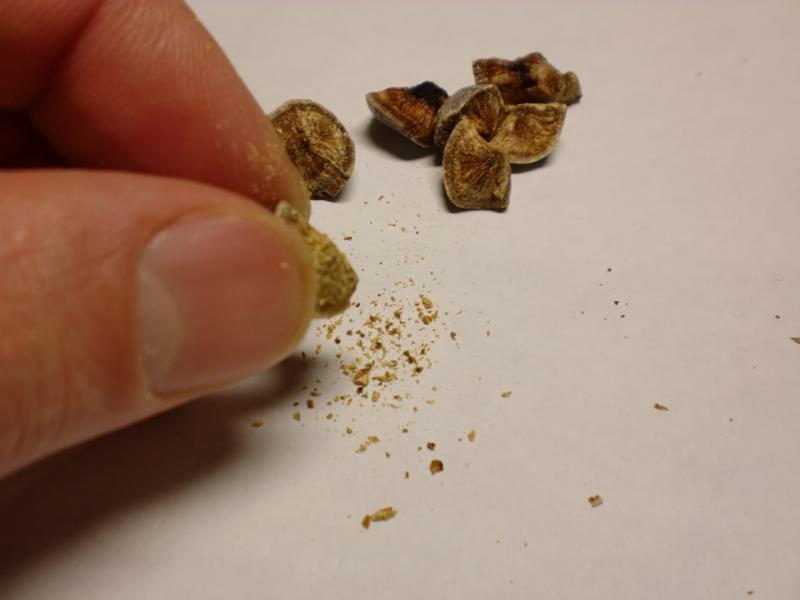 Как вывести камни из мочеточника в домашних условиях