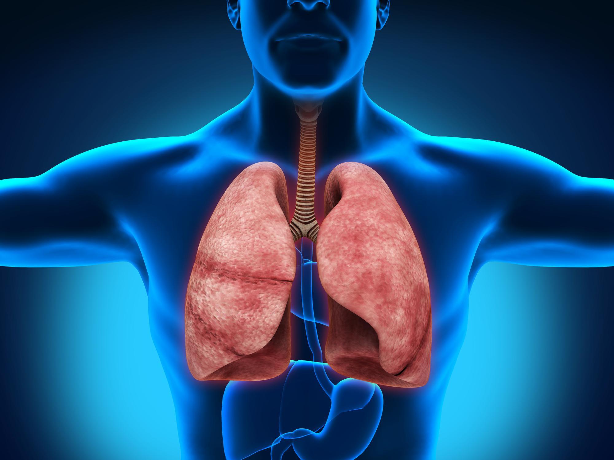 Народные средства в лечении плеврита